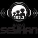 Radyo Seyhan by Yayindakiler Yerel Radyo Platformu