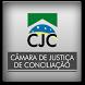 CJC Brasil - Cálculos by HD SistemaX