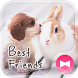 icon & wallpaper-Best Friends- by +HOME by Ateam
