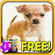 3D Chihuahua Slots - Free by Signal to Noise Apps