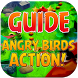 Guide for Angry Birds Action by MpaFox
