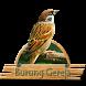 Kicau Burung Gereja Lengkap by Tigabelas Corp