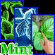 Mint Live Wallpaper by JMint