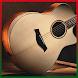 آهنگ های بی کلام گیتار by websoft group