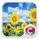 Sunflowers CLauncher Theme by CG-Live-Wallpapers