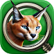 Safari Park Life: Hidden Oasis by Mysteries & More Inc