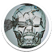 Crystal Skull Live Wallpaper by Sub Nation