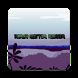 Marsh Hunter Runner by Eric Barber