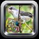 canto do pássaro preto by Tahu Bulat App