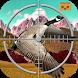 VR Bird Hunting by VR Games Studio