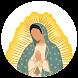 La Virgen de Guadalupe RA by Aplicaciones Inmersivas