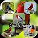 Canto de Pássaros (Offline) by MusickuApp