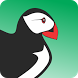 New Puffin Browser Guide 2017 by KohzenDev