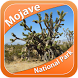 Mojave National Park by Swan Informatics