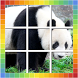 Kids Animal Jigsaw Puzzle by Best of Puzzles