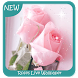 Roses Live Wallpaper by Creativetown