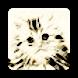 Kitten Faces - Pair Matching Game