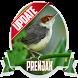 Masteran Kicau Prenjak by EdukaPlay