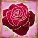 Roses Photo Crop Editor