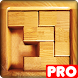 PICTRIS Pro by PANAGOLA