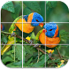 Birds Puzzle by Karoshio Technologies