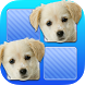 Free Memo Game Pets Photo Kids by Banana Apps Kids