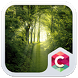 Best Forest Theme C Launcher by Baj Launcher Team