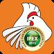 IPEX 2015