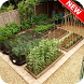 Vegetables Garden Ideas by queendroid