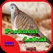 Suara Burung Perkutut Lokal by Hoki Developer