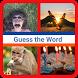 4 Pics 1 Word is Fun!