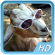 Funny Animal Videos by Gomutzon Carugom