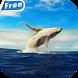 Whale HD Video Live Wallpaper