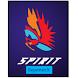 SPIRIT ReporterX by Sachin Chalapati
