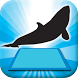3D LEARNING CARD SEA ANIMALS by (주)알짬교육
