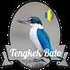 Masteran Kicau Tengkek Buto by EdukaPlay