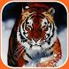 Wild Animal Wallpapers by Portieri Ahmad