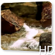 Rocks Waterfall Live Wallpaper by Lawscancybe