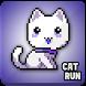 Super Cat Bird Run