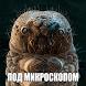 Под микроскопом by Zubr Mobile