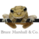 Bruce Marshall & Co by MyFirmsApp