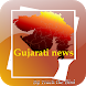 Gujarati News Daily Papers by Track the Bird