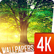 Tree Wallpapers 4k by Ultra Wallpapers