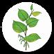 Weed Identifier (UK) by Invasive Weeds Agency Ltd