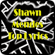 Shawn Mendes Top Lyrics by LazyMe Studio