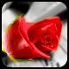 Rose Love Live wallpaper by CM Launcher Live Wallpaper