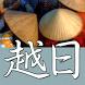 CJKI Vietnamese-Japanese Dict. by CJKI