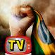 televisão brasileira