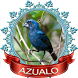 Uma coleção de Twitter Azulão by Canto de Brazileiros