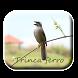 Trinca Ferro De Cantos Completos by M Zakia Randi 354 Apps